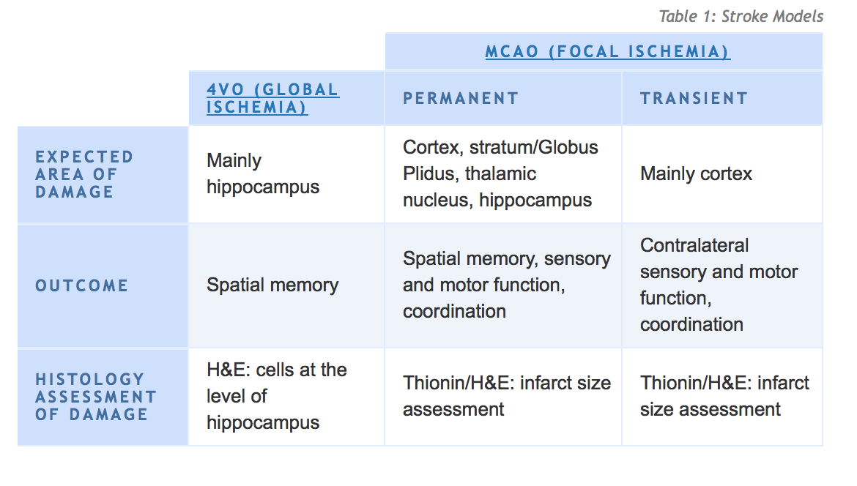 preclinical-stroke-models