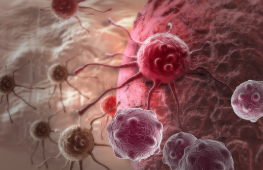 syngeneic tumor models MDBiosciences