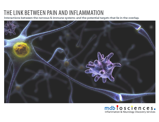 link between pain and inflammation, MD Biosciences preclinical contract research (CRO)