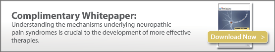 Preclinical models of neuropathic pain, allodynia, hyperalgesia, preclinical contract research, CRO
