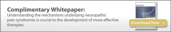 Preclinical models of neuropathic pain, allodynia, hyperalgesia, preclinical contract research, CRO