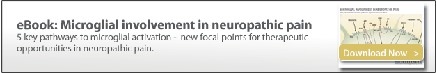 microglia in neuropathic pain, pre-clinical contract research, preclinical CRO