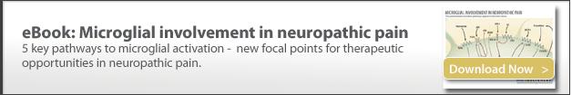 microglia in neuropathic pain, pre-clinical contract research, preclinical CRO