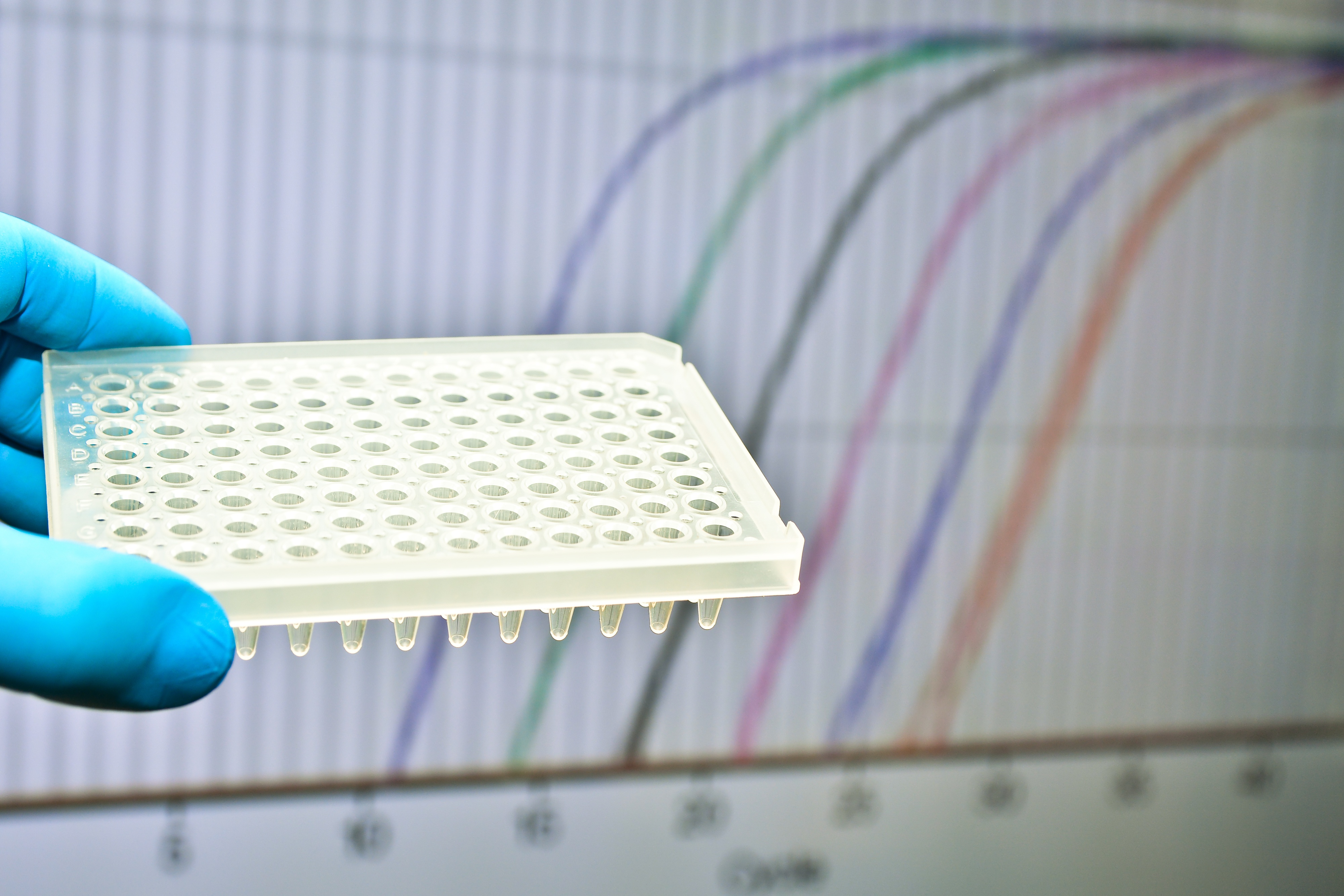Real-Time-PCR-Molecular-Analytics.jpg