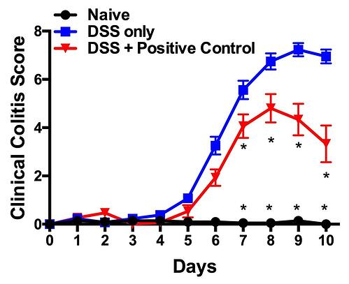 DSS Clinical Colitis Score.jpg