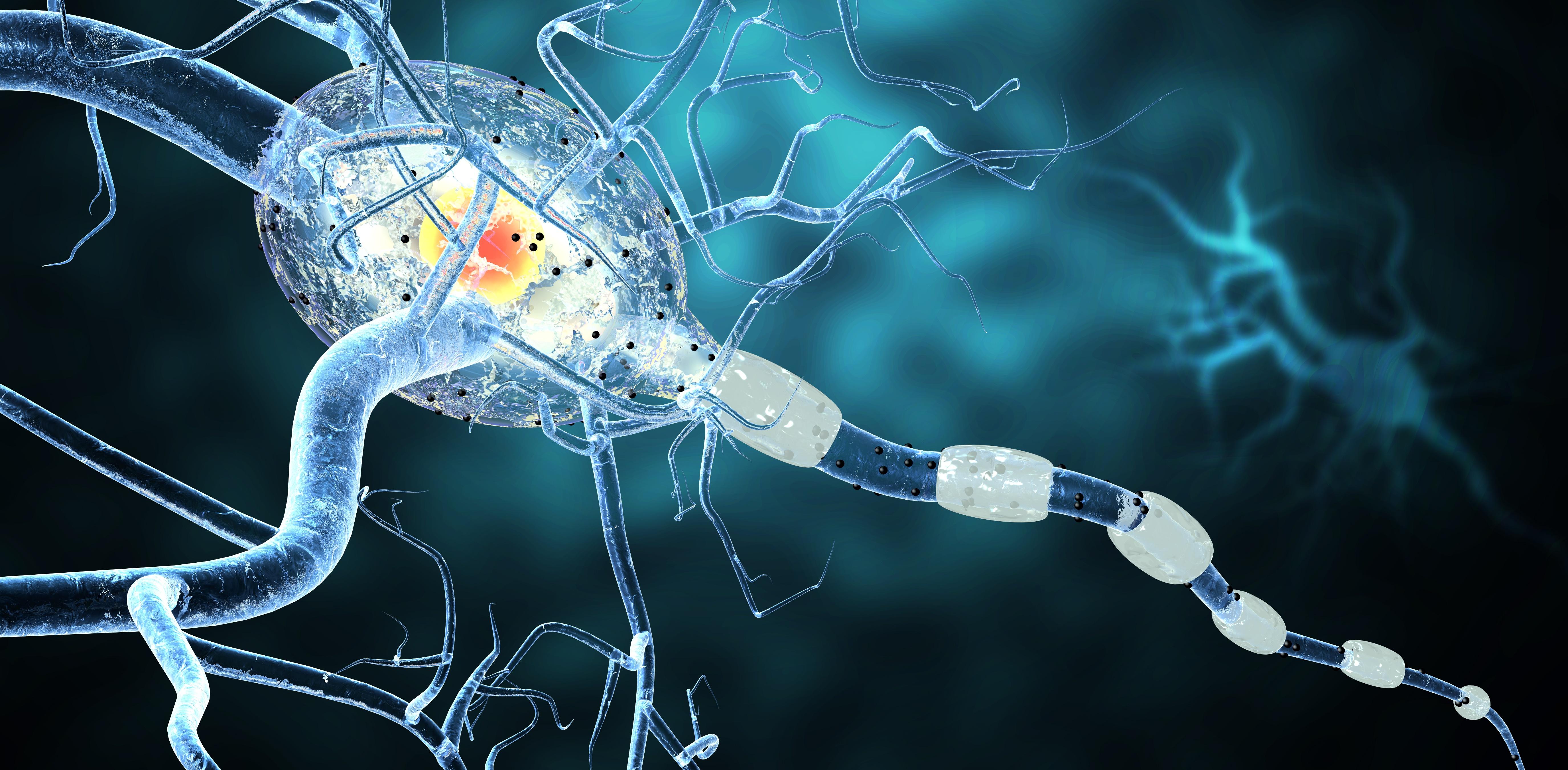 Multiple-Sclerosis-Myelin-EAE-Batch-Release-Testing-GLP-Copaxone_Generics.jpg