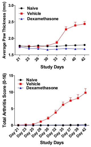 Total-Arthritis-Score-Average-Paw-Thickness-Score-Collagen-Induced-Arthritis-Model-CIA.jpg
